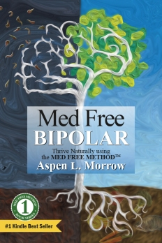 2013-127_MedFreeBipolar_BookCover_#1Kindle